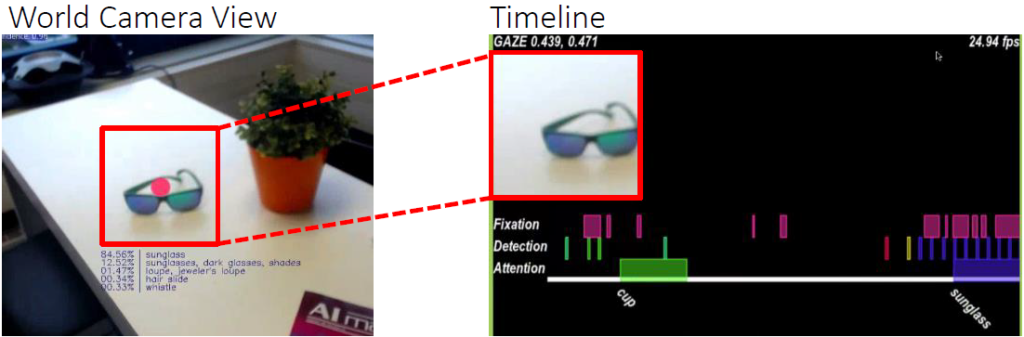 Gaze-guided Object Classification